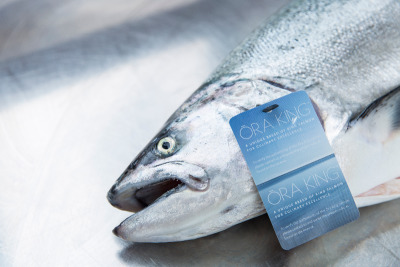 Whole Ora King Salmon for sale, wholesale seafood