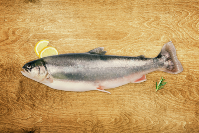 Niceland Whole Arctic Char for sale